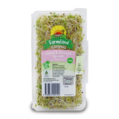 alfalfa broccoli sprouts farmland greens
