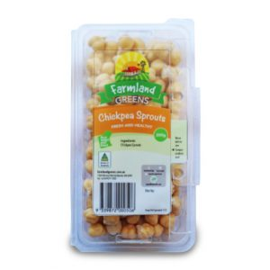 chickpea sprouts farmland greens